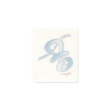 Tarjeta librito chupete azul